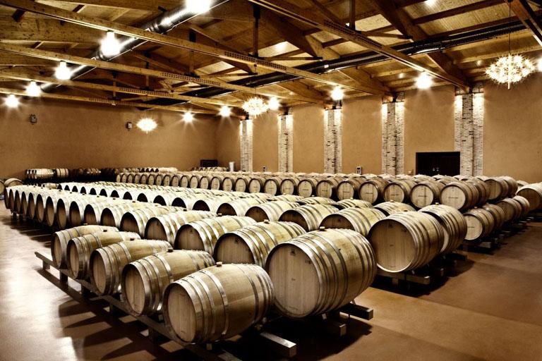 Ribera del Duero - Barricas de vino de Emilio Moro
