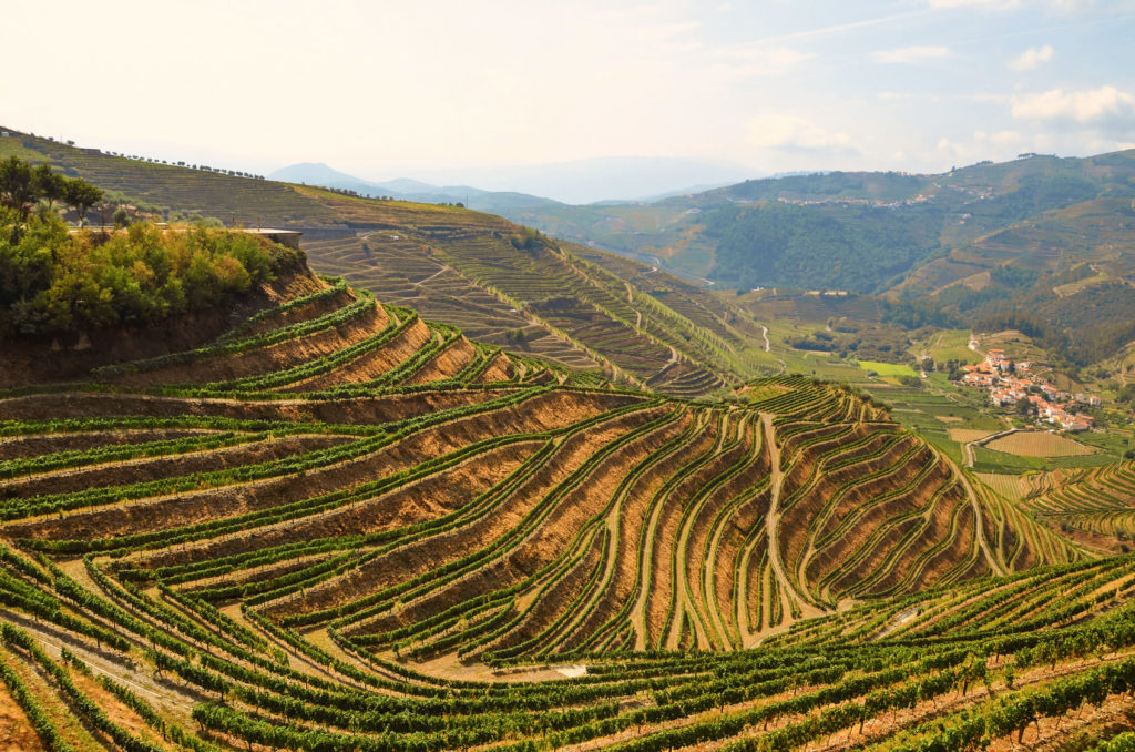wine_trips_douro_portugal
