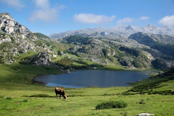 Asturias-montañas